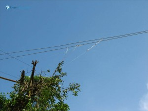 63. Wires