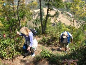 99. Steeper climb