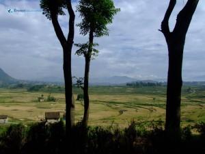 14. Landscape at Khokana 3