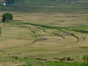 43. Landscape at Khokana 4