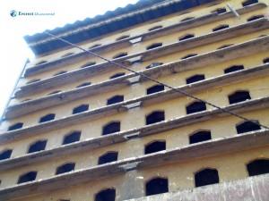 67. pigeonhouse