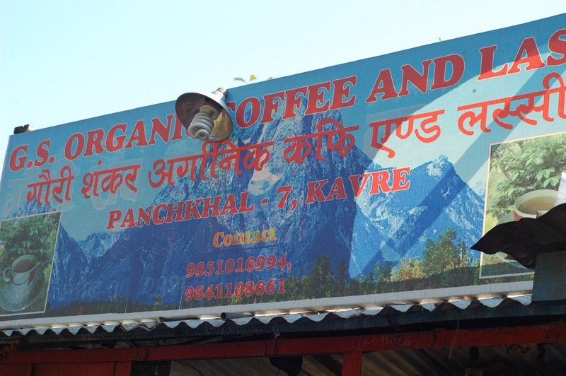 08 Organic Coffee and Lassi Shop