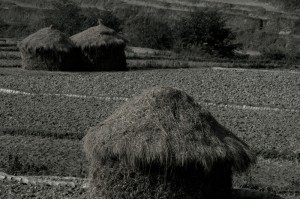 The Straw Home in Nepal