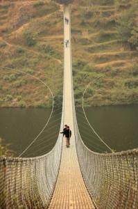 fish bridge