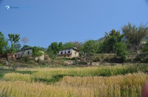 20. A typical village type house
