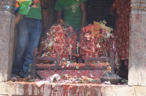 35. People offering animal's blood to God as a traditioinal belief