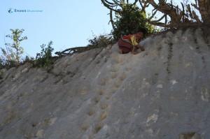44. Mini Rock climbing