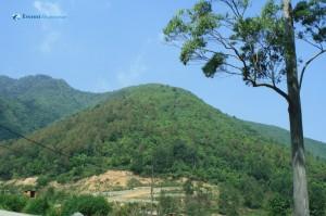9. Green Hills