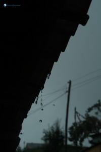 24-Droplets
