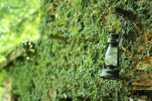 07. The Green lantern