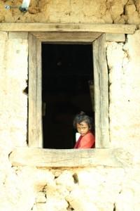 15. Gazing through the window