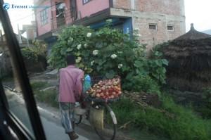 34. Bhaiya with Chinese apples