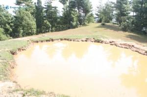 30. Buffalo's swimming pool
