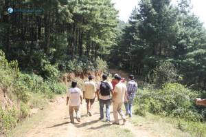 35. Down hill walk