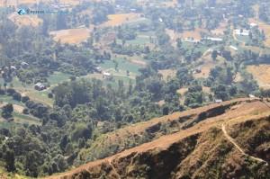 18. Vegetables for Kathmandu