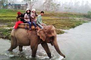 43. Elephant ride