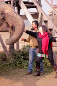55. Feeding the elephant