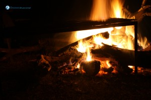 25. Fire