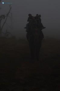 40. Foggy morning