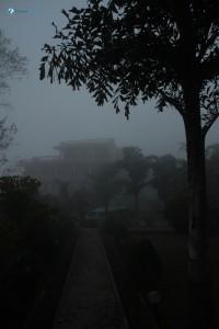 75. Misty Morning