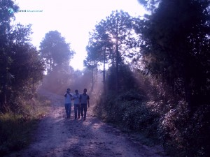 14. Along the way