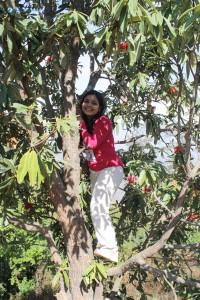 32. Tree climber