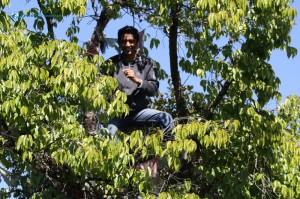 47. The Tree Man