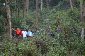 12. In The Middle Of The Jungle