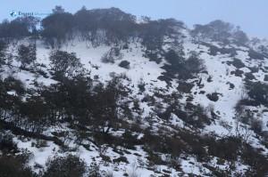 56. Snow hill