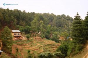 34. The Village