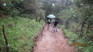 30. Oh rains