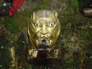 14. Tiger Mouth as Baghdwar