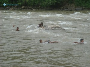 9. Local kids swimming