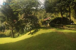 46. Good Morning Village