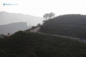 30. Meandering Road