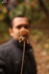 28. Concealing behind a barren sapling