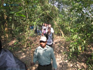 54. Jungle Walk with guide