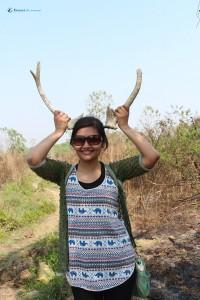 58. Modern female deer