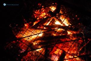 20. The pork BBQ