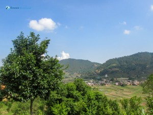 9. Beautiful village surrounded by green environment, photo taken from hill of lele