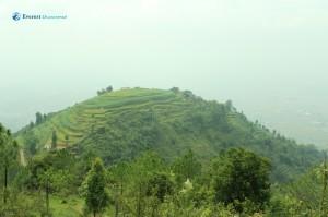 44. Green Plateau
