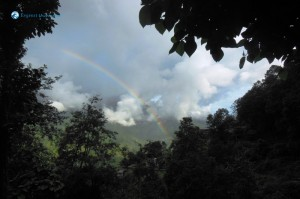 44. Rainbow