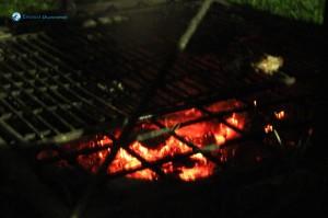 15. Fireside
