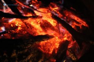 33. Fire's the sun, unwindin' itself out o' the wood.