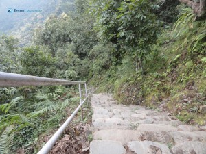 5.Hiking Route
