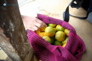 10. Best oranges ever