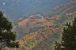 33. Himal muni hamro ghar
