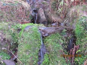 44. Longest waterfall
