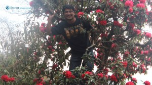 7. Ramesh in Rhododendron