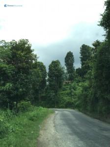3. Gloomy Road